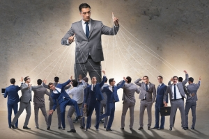 Stakeholders must not be micro-managers